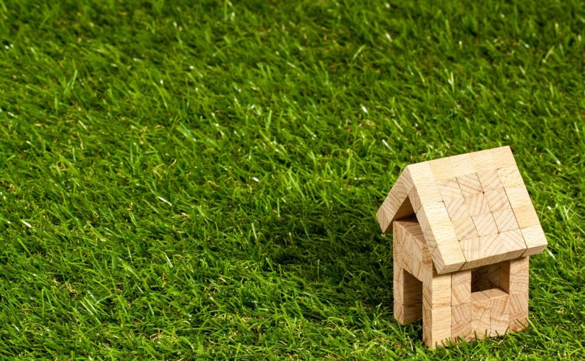 dach zielony ekstensywny